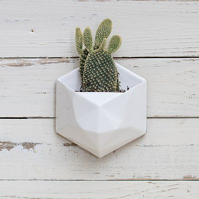 ceramic-wall-hanging-planter_opt