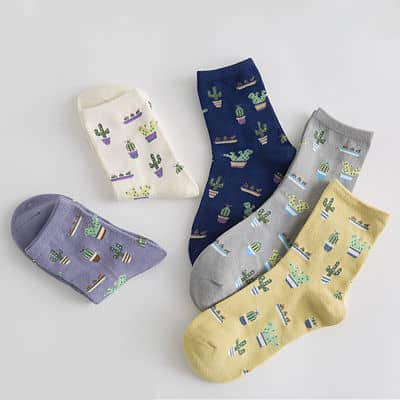 cacti-pattern-socks_opt-min