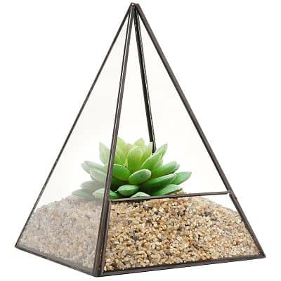 terrarium-glass_opt-min